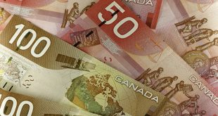 Ottawa: Deficit bugetar mai mic, alocatii ceva mai mari pentru copii