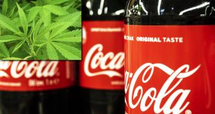 Coca-Cola, interesata de bauturile care contin CBD din canabis